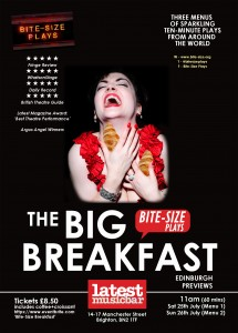 Bite-Size Breakfast - Preview A5 Flyer copy